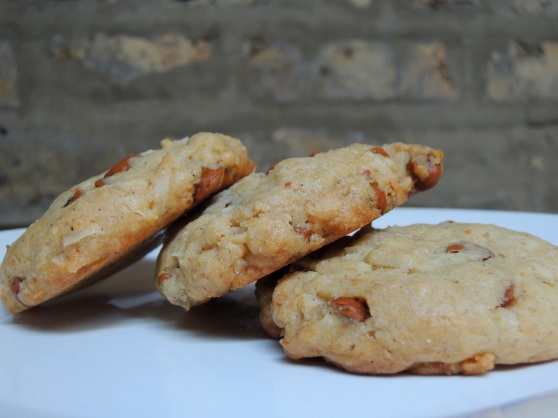 Cinnamon Coconut Cookies